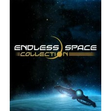 Endless Space Collection ( Endless Space + Disharmony )